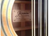 Jasmine TS612