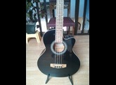 Johnson Guitars JB-24