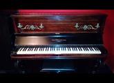 Korg Wsc-1s Piano
