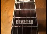 LTD EC-256 [2009-2012]