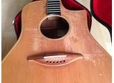 Luthier Claude Fouquet PAC (91487)