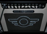Mad Professor Old School 21RT