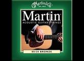 Martin & Co Traditional 80/20 Bronze M170 Extra Light 10-47