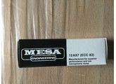 Mesa Boogie EL84 Duet