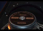 Mesa Boogie Lone Star 1x12 23