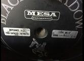 Mesa Boogie Mark IIC+ Combo