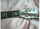 Michael Kelly Guitars Custom Patriot