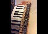 Michelsonne Paris Toy Piano 25 Keys
