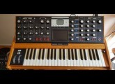 Moog Music Minimoog Voyager (20124)