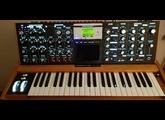 Moog Music Minimoog Voyager (64089)