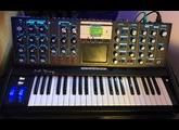 Moog Music Minimoog Voyager Anniversary 50th (67915)