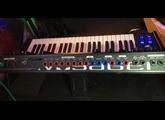 Moog Music Minimoog Voyager Anniversary 50th (74474)