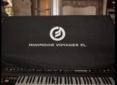 Moog Music Minimoog Voyager Rack Mount Edition