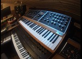 Moog Music Moog One 8