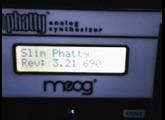 Moog Music SlimPhatty