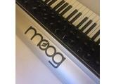 Moog Music SUB 37 (24319)