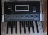 Moog Music Taurus