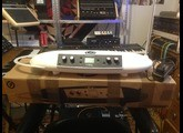 Moog Music Theremini