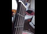 Morris Acoustic Guitar