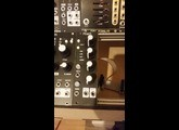 Mutable Instruments PEAKS (4344)