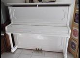 Native Instruments Akoustik Piano