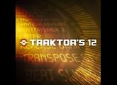 Native Instruments Traktor's 12