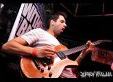 Parker Guitars Fly Mojo Single Cut