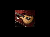 Parker Guitars Fly Mojo Summer