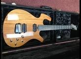 Parker Guitars P-44V
