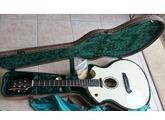 Parker Guitars P6E