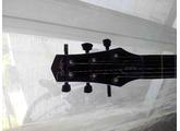 Parker Guitars PM-20Pro