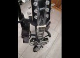 Pasadena Les Paul 12 String