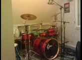 """Pearl Export Select 14""""x5.5"""""""