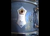 Pearl Signature MIKE MANGINI 10x6.2
