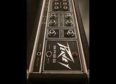 Peavey Bass 400 Series