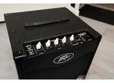 Peavey MAX 110 2013 Edition