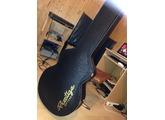Prestige Guitars Pro DC