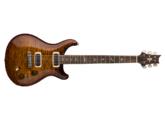 PRS Experience PRS 2018 Paul's Guitar