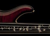 PRS Grainger 5 Fretless Bass