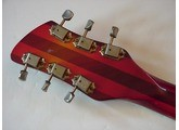 Rickenbacker 375
