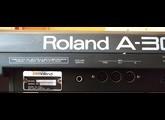 Roland A-30