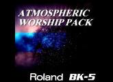 Roland BK-5 (98678)