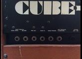 Roland Cube 60 Vintage