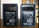 Roland DS-50A