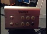 Roland HD-1 Module