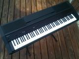 Roland HP3000