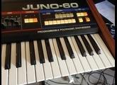 Roland JUNO-60 (24247)