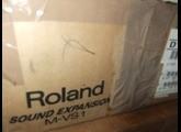Roland M-VS1 Vintage Synth