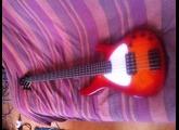 Sandberg (Bass) Basic 5
