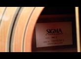 Sigma DM-5